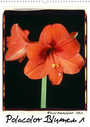 Polacolor Blumen 1 (Wandkalender 2021 DIN A3 hoch) von Huempfner,  Franz