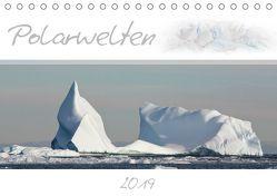 Polarwelten (Tischkalender 2019 DIN A5 quer) von Schlögl,  Brigitte