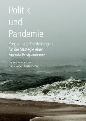 Politik und Pandemie von Metelmann,  Hans-Robert