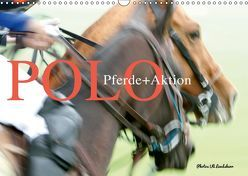 Polo Pferde + Aktion 2019 (Wandkalender 2019 DIN A3 quer) von Landsherr,  Uli