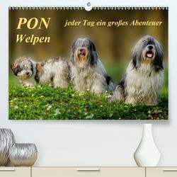 PON – Welpen, jeder Tag ein großes Abenteuer (Premium, hochwertiger DIN A2 Wandkalender 2020, Kunstdruck in Hochglanz) von Roder,  Peter