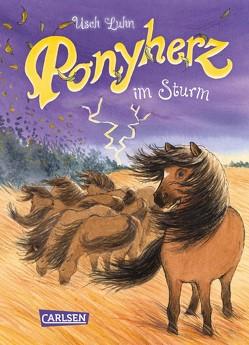 Ponyherz 14: Ponyherz im Sturm von Harvey,  Franziska, Luhn,  Usch