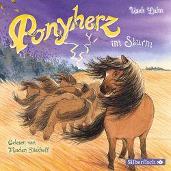 Ponyherz 14: Ponyherz im Sturm von Diekhoff,  Marlen, Luhn,  Usch