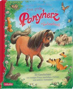 Ponyherz: Das große Ponyherz-Vorlesebuch – 33 Geschichten von mutigen Ponys, kuscheligen Füchsen und anderen Vierbeinern von Harvey,  Franziska, Luhn,  Usch