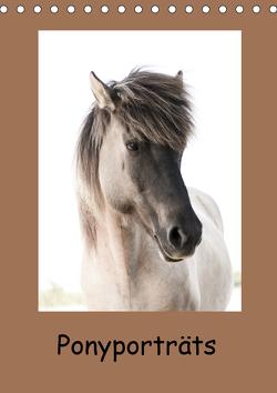 Ponyporträts (Tischkalender 2021 DIN A5 hoch) von Beuck,  Angelika