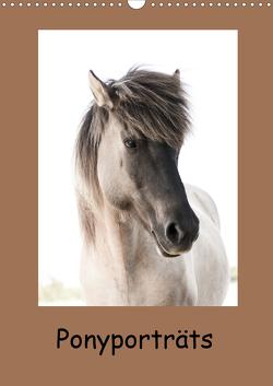 Ponyporträts (Wandkalender 2021 DIN A3 hoch) von Beuck,  Angelika