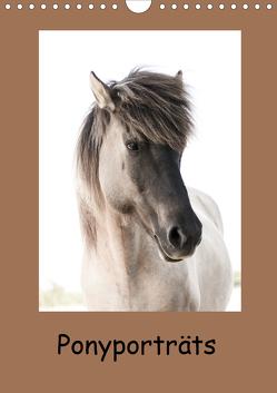 Ponyporträts (Wandkalender 2021 DIN A4 hoch) von Beuck,  Angelika