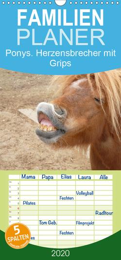 Ponys. Herzensbrecher mit Grips – Familienplaner hoch (Wandkalender 2020 , 21 cm x 45 cm, hoch) von Stanzer,  Elisabeth