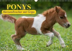 Ponys. Herzensbrecher mit Grips (Wandkalender 2019 DIN A3 quer) von Stanzer,  Elisabeth