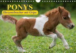 Ponys. Herzensbrecher mit Grips (Wandkalender 2019 DIN A4 quer) von Stanzer,  Elisabeth