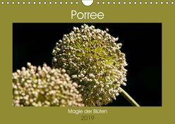 Porree – Magie der Blüten (Wandkalender 2019 DIN A4 quer) von Bölts,  Meike