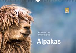 Portraits der kuscheligen Alpakas (Wandkalender 2021 DIN A3 quer) von Mentil,  Bianca
