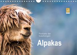 Portraits der kuscheligen Alpakas (Wandkalender 2021 DIN A4 quer) von Mentil,  Bianca