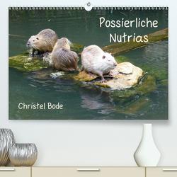 Possierliche Nutrias (Premium, hochwertiger DIN A2 Wandkalender 2020, Kunstdruck in Hochglanz) von Bode,  Christel