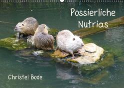 Possierliche Nutrias (Wandkalender 2020 DIN A2 quer) von Bode,  Christel