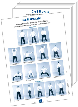 Poster – Die 8 Brokate (10 Stück DIN A3) von Guorui,  Jiao, Hildenbrand,  Dr. Gisela