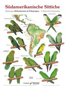 Poster Südamerikanische Sittiche 3 von Arndt,  Thomas