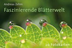 """Postkartenbuch """"Faszinierende Blätterwelt"""" von Quelle & Meyer Verlag"""