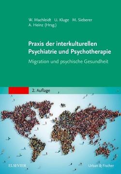 Praxis der interkulturellen Psychiatrie und Psychotherapie von Heinz,  Andreas, Kluge,  Ulrike, Machleidt,  Wielant, Sieberer,  Marcel