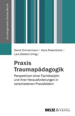 Praxis Traumapädagogik von Dabbert,  Lars, Rosenbrock,  Hans, Zimmermann,  David
