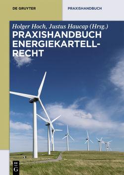 Praxishandbuch Energiekartellrecht von Haucap,  Justus, Hoch,  Holger