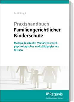 Praxishandbuch Familiengerichtlicher Kinderschutz von Ernst,  Rüdiger, Hoffmann,  Birgit, Kannegießer,  Anja, Katzenstein,  Henriette, Lohse,  Katharina