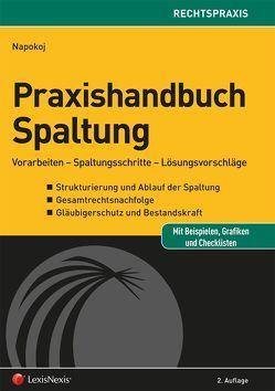 Praxishandbuch Spaltung von Napokoj,  Elke