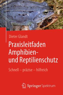 Praxisleitfaden Amphibien- und Reptilienschutz von Glandt,  Dieter, Lay,  Martin