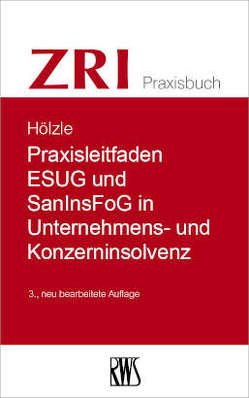 Praxisleitfaden Reorganisation und Restrukturierung von Gerrit,  Hölzle