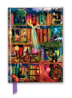Premium Notizbuch DIN A5: Aimee Stewart, Bücherregal Schatzjäger