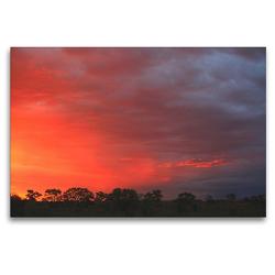 Premium Textil-Leinwand 120 x 80 cm Quer-Format Abendstimmung nahe der Etosha-Pfanne, Namibia | Wandbild, HD-Bild auf Keilrahmen, Fertigbild auf hochwertigem Vlies, Leinwanddruck von Dr. Werner Altner