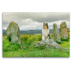 Premium Textil-Leinwand 120 x 80 cm Quer-Format An den Callanish Stones auf der Insel Lewis. | Wandbild, HD-Bild auf Keilrahmen, Fertigbild auf hochwertigem Vlies, Leinwanddruck von Julia Elling