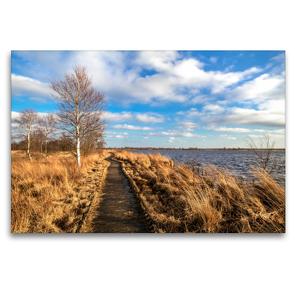 Premium Textil-Leinwand 120 x 80 cm Quer-Format Bohlenweg durch das Hochmoor   Wandbild, HD-Bild auf Keilrahmen, Fertigbild auf hochwertigem Vlies, Leinwanddruck von A. Dreegmeyer