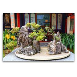Premium Textil-Leinwand 120 x 80 cm Quer-Format Bonsai – alte chinesische Gartenkunst | Wandbild, HD-Bild auf Keilrahmen, Fertigbild auf hochwertigem Vlies, Leinwanddruck von Thomas Böhm