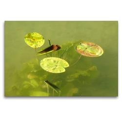 Premium Textil-Leinwand 120 x 80 cm Quer-Format Der Ammersee | Wandbild, HD-Bild auf Keilrahmen, Fertigbild auf hochwertigem Vlies, Leinwanddruck von Flori0