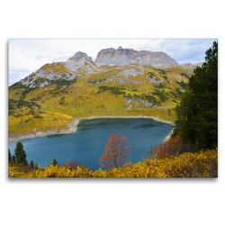 Premium Textil-Leinwand 120 x 80 cm Quer-Format Der Baum in seiner schönsten Form   Wandbild, HD-Bild auf Keilrahmen, Fertigbild auf hochwertigem Vlies, Leinwanddruck von N N
