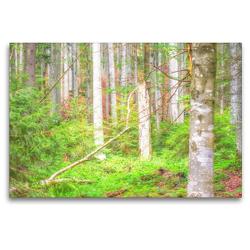 Premium Textil-Leinwand 120 x 80 cm Quer-Format Die geheime Sprache der Bäume | Wandbild, HD-Bild auf Keilrahmen, Fertigbild auf hochwertigem Vlies, Leinwanddruck von Bettina Hackstein