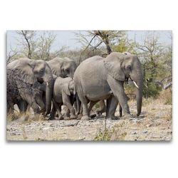 Premium Textil-Leinwand 120 x 80 cm Quer-Format Elefantengruppe   Wandbild, HD-Bild auf Keilrahmen, Fertigbild auf hochwertigem Vlies, Leinwanddruck von Wilfried Martin