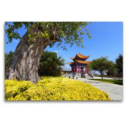 Premium Textil-Leinwand 120 x 80 cm Quer-Format Frühling in der Provinz Yunnan / China | Wandbild, HD-Bild auf Keilrahmen, Fertigbild auf hochwertigem Vlies, Leinwanddruck von Thomas Böhm