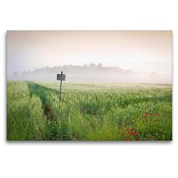 Premium Textil-Leinwand 120 x 80 cm Quer-Format Frühling in der Toskana – Die Gegend von San Galgano, Siena | Wandbild, HD-Bild auf Keilrahmen, Fertigbild auf hochwertigem Vlies, Leinwanddruck von CALVENDO