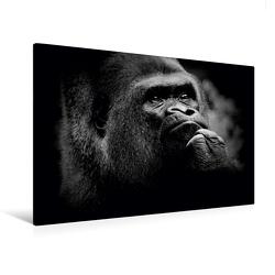 Premium Textil-Leinwand 120 x 80 cm Quer-Format Gorilla | Wandbild, HD-Bild auf Keilrahmen, Fertigbild auf hochwertigem Vlies, Leinwanddruck von Ulrich Brodde von Brodde,  Ulrich