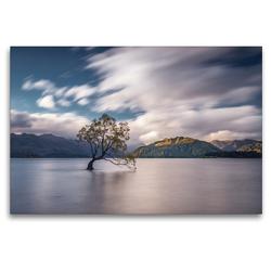 Premium Textil-Leinwand 120 x 80 cm Quer-Format Lake Wanaka und der einsame Wanaka Tree | Wandbild, HD-Bild auf Keilrahmen, Fertigbild auf hochwertigem Vlies, Leinwanddruck von Alexander Höntschel