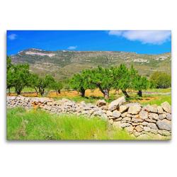 Premium Textil-Leinwand 120 x 80 cm Quer-Format Mandelbäume in den Bergen | Wandbild, HD-Bild auf Keilrahmen, Fertigbild auf hochwertigem Vlies, Leinwanddruck von LianeM