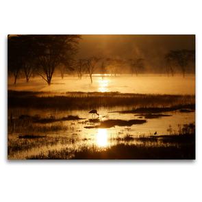 Premium Textil-Leinwand 120 x 80 cm Quer-Format Morgenstimmung am Lake Nakuru | Wandbild, HD-Bild auf Keilrahmen, Fertigbild auf hochwertigem Vlies, Leinwanddruck von Michael Herzog