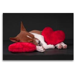 Premium Textil-Leinwand 120 x 80 cm Quer-Format Müde bin ich, geh' zur Ruh' | Wandbild, HD-Bild auf Keilrahmen, Fertigbild auf hochwertigem Vlies, Leinwanddruck von Angelika Joswig