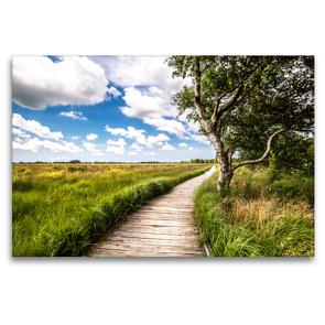 Premium Textil-Leinwand 120 x 80 cm Quer-Format Naturlehrpfad-Blick   Wandbild, HD-Bild auf Keilrahmen, Fertigbild auf hochwertigem Vlies, Leinwanddruck von A. Dreegmeyer