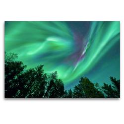 Premium Textil-Leinwand 120 x 80 cm Quer-Format Nordlichter im Wald | Wandbild, HD-Bild auf Keilrahmen, Fertigbild auf hochwertigem Vlies, Leinwanddruck von Pierre Oesterle