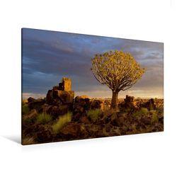 Premium Textil-Leinwand 120 x 80 cm Quer-Format Regenzeit   Wandbild, HD-Bild auf Keilrahmen, Fertigbild auf hochwertigem Vlies, Leinwanddruck von Michael Voß