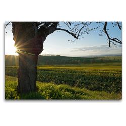 Premium Textil-Leinwand 120 x 80 cm Quer-Format Rund um´s Kloster Donndorf (Thüringen) | Wandbild, HD-Bild auf Keilrahmen, Fertigbild auf hochwertigem Vlies, Leinwanddruck von Flori0