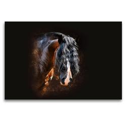 Premium Textil-Leinwand 120 x 80 cm Quer-Format Shirehorse Luis | Wandbild, HD-Bild auf Keilrahmen, Fertigbild auf hochwertigem Vlies, Leinwanddruck von Nicole Bleck